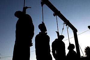 hanging-shiraz-300